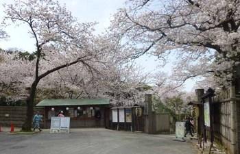 1三溪園正門.JPG
