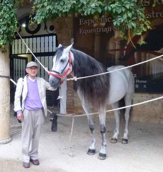 かわいい馬.jpg